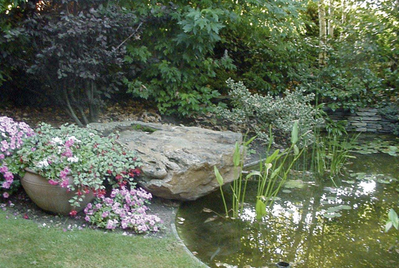 04 piscines naturelles et bassin d 39 agr ment aubry for Entretien jardin 53